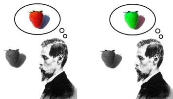 inverted_qualia_of_colour_strawberry.jpg